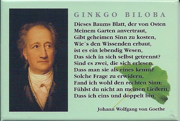 Fotomagnet Ginkgo Gedicht